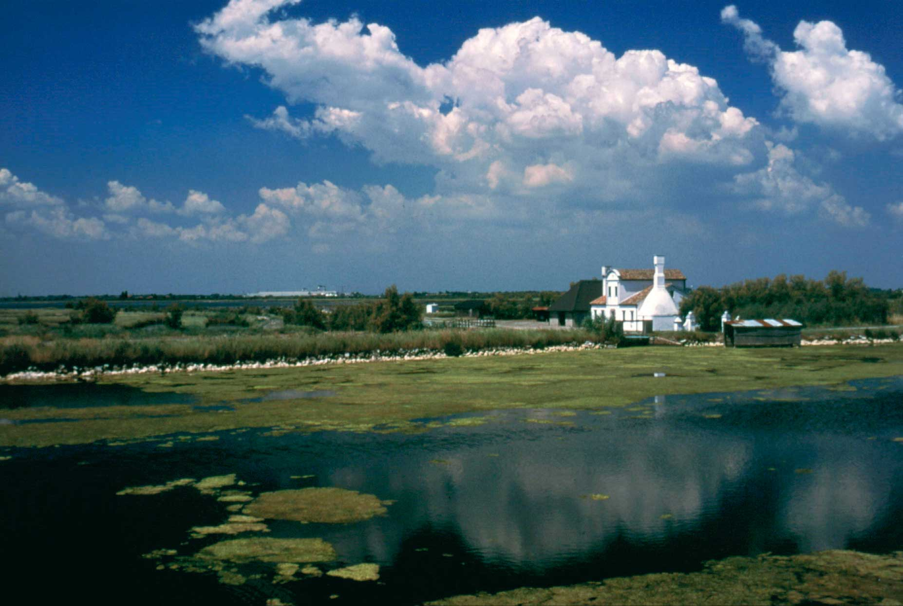Parco Delta del Po verso riconoscimento UNESCO