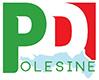 Partito Democratico Polesine
