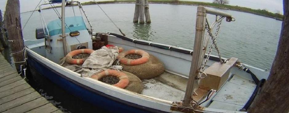 On. Crivellari in soccorso della piccola pesca con un emendamento in stabilità