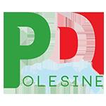 Sito del PD provinciale di Rovigo