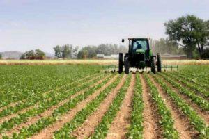 """Azzalin: """"Dal Governo attenzione alle imprese agricole, anche la Regione dia il suo contributo"""""""